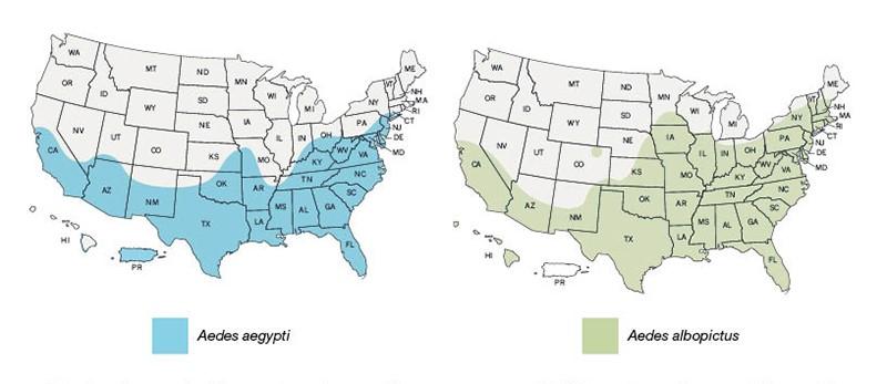 CDC_mosquito_charts
