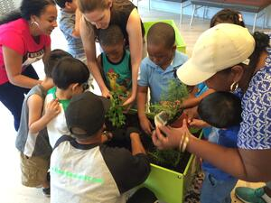 group-of-children-with-providers-examining-plants