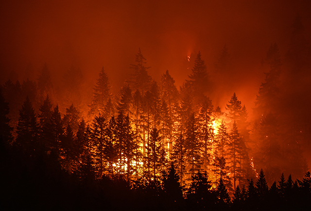 Preparing for Wildfires: The Reality of Today